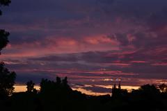 Sunset (Dreaming of the Sea) Tags: nikon d7200 dusk trees twilight sunset tamron pink palmtrees tamronsp2470mmf28divcusd redsunset pinksunset sky storm clouds 500v20f topf25 1000v40f flickrelite