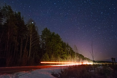 Starry Woods (free3yourmind) Tags: starry woods trees forest road car passing light nature stars night nightsky braslav belarus