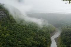 Letchworth SP (robvaughnphoto.com) Tags: fingerlakes newyork fog genesee