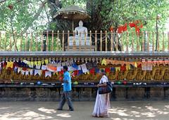 Kelaniya Temple (IMG_2241b) (Dennis Candy) Tags: srilanka ceylon serendip serendib kelaniya temple solosmasthana buddhism religion culture tradition heritage holy sacred buddha statue botree worshipper people