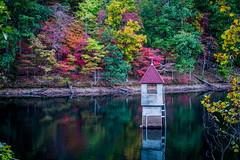 Berry College Reservoir (Shane Clements) Tags: outdoors nature fall foliage colorful leaves mountainlake berrycollege exploregeorgia mountains lake serene outdoor