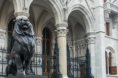 20160917 Budapest, Hungary 03231 (R H Kamen) Tags: 19thcenturystyle budapest easterneurope hungarianparliamentbuilding hungary lionfeline parliamentbuilding pest unescoworldheritagesite animalrepresentation architecture buildingexterior builtstructure entrance gothicstyle neogothic rhkamen sculpture