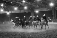 The rotating rodeo blade (sniggie) Tags: rodeopractice monochrome kentuckyexpositioncenter horse cowgirl equestrian rodeo equistrian