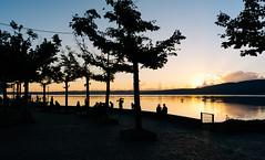 Wonderful show (lorenzoviolone) Tags: d5200 dslr fujiastia100f landscape nikon nikond5200 reflex sunset lake lakeside nature silhouettes streetphoto streetphotocolor streetphotography sunsetcolors sunsetsilhouettes trees walk:trevignano=09102016 trevignanoromano lazio italy