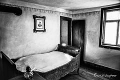Das Wandbild #  14 # Nikon F3 Agfa APX100 - 2016 (irisisopen f/8light) Tags: nikon f f3 agfa apx 100 analog scherzweiss bw blackwhite film negativ negativfilm irisisopen