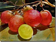 I AM DEFERENT-in explore  685,851 items (jawadn_99) Tags: explore art pomegranate fruite red tasty plate stilllife interrestingness yellow flora texture
