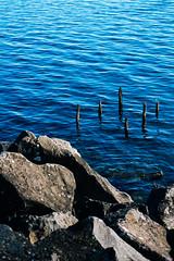 Blue lake (lorenzoviolone) Tags: d5200 dslr fujiastia100f nikon nikond5200 reflex rocks vsco vscofilm waves cliffside lake sticks streetphoto streetphotocolor streetphotography walk:trevignano=10162016 water trevignanoromano lazio italy