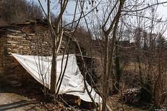 stendiamo un velo pietoso (Clay Bass) Tags: 24105 balma baita canon5d natural stones tarpaulin trees