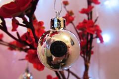 O Tempo e seus momentos! #fotografia #foto #fotografiainiciante #detalhes #foco #desfoco #natal #macro #camera #lente #fotografo #enfeites #cores #tgo #sp (Henrique_tgo) Tags: macro foto fotografiainiciante fotografo fotografia detalhes foco desfoco cores natal enfeites sp tgo camera lente