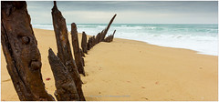 90 Mile Beach, Australia (CvK Photography) Tags: 90milebeach australia autumn beach canon coast color cvk fall holiday seascape shipwreck trinculo victoria waves goldenbeach australië au