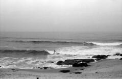 Untitled-12 (Avelino Oliveira) Tags: leicam6 50mm doublex 400 hc110 film analogue analog
