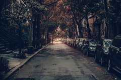Manhattan Stories (Kaip Kine) Tags: greenwich village autumn fall leaves street cinematic perspective canon 85mmf12lii 85mm 5dmarkiii nyc new york city 2016 colors tones usa movie manhattan