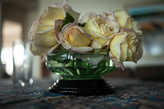 Rose bowl antique. 5D MkII LEICA  35 mm f/2 R (leweeg10) Tags: 5dmarkii leica352r manuallens roses flower
