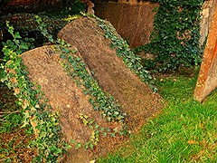 Fallen Ivy! (springblossom3) Tags: church gravestones tombstones chipping norton cotswolds religion history worship ivy plant nature graves