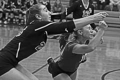 IMG_6756 (SJH Foto) Tags: girls volleyball high school garden spot york suburban teens teenagers dive collision closeup action shot favourite libero black white blackandwhite bw monocolour