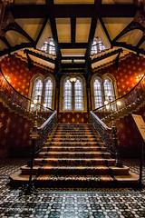 Ornate (Alex Chilli) Tags: staircase steps banister windows colour canon eos 70d kingscrossst pancras hotel london england