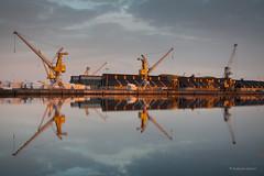 Le port de Saint-Malo (guillaumegesret) Tags: grues