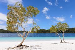 Fraser Island, Australia - Lake McKenzie (GlobeTrotter 2000) Tags: australia bay boorangoora fraser hervey island lake mckenzie oceania queensland sand tourism travel visit paradise heaven