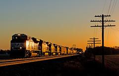 NS 2686, NS Chicago Line, Wawaka, Indiana (monon738) Tags: train railroad railway railfanning norfolksouthern emd emdsd70m2 sd70m2 ns2686 ns309 locomotive engine diesellocomotive pentax k5iis freighttrain electromotivedivision indiana wawakaindiana noblecounty nschicagoline unit ns poleline sunrise smcpda50135mmf28edifsdm telegraphpoles