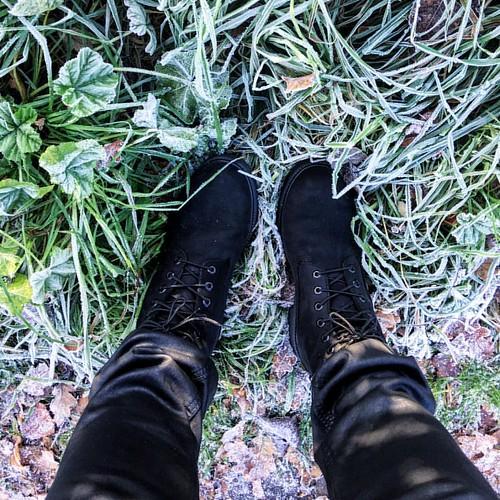 Frosty Brrrrrrr