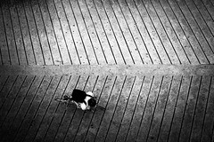 Climb (tomabenz) Tags: sony a7rm2 urban noiretblanc street photography bike bw streetview black white monochrome paris blackandwhite sonya7rm2 streetphotography