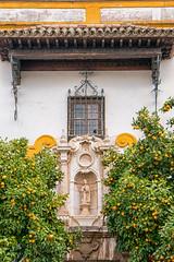 HWW in Sevilla, Spain (Janos Kertesz) Tags: sevilla balcony facade architecture building ancient town city house window exterior tourism historical spain spanien