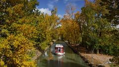 Navegando el canal (Luis Corts Zacaras) Tags: castilla medina valladolid arboles otoo canal rioseco barco agua