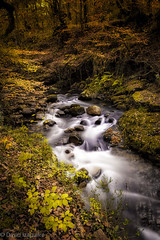 Tiempos de Otoo (Tabernilla (David Izaguirre)) Tags: cantabria espaa europa ucieda bosque otoo rio