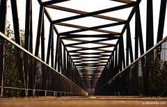Waiting in Vain (Paulo Silveirinha) Tags: bridge lines university soe aveiro greatphotographers top20bridges ringexcellence greaterphotographers dblringexcellence tplringexcellence eltringexcellence