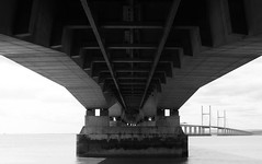 Underneath the Severn Bridge (TempusVolat) Tags: bridge tree beach canon dark dead eos coast crossing estuary severn gareth tempus 60d volat wonfor mrmorodo garethwonfor tempusvolat