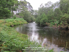 River Kerry, Wester Ross, Scotland. (Malcolm Mowat's: Quality Scottish Products) Tags: summer wool water beautiful rain clouds river scotland waterfall ross spring malcolm scottish kerry rapids peat scarves ferns worsted alder caledonian wester mowats spate wwwmalcolmmowatscom
