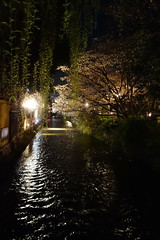 (Richard, enjoy my life!) Tags: flower japan night river kyoto sony   sakura   dscrx100
