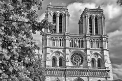 Our Lady of Paris (jbarc in BC) Tags: bw paris france cathedral notredame