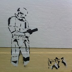 Storm trooper. Koalas. #stencil #canberra (KatieTT) Tags: square squareformat iphoneography instagramapp uploaded:by=instagram foursquare:venue=4bad4730f964a52033413be3