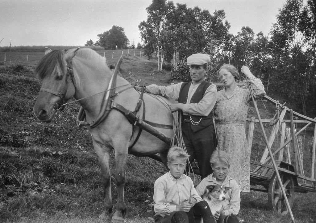 i oslo sex med hest