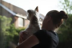 Show Me...... (christilou1) Tags: dog macro girl jack fuji russell jr terrier 60mm xe1