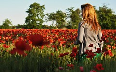 Evelin.8 (TRUDI.) Tags: flowers sunset red sunlight blur milan primavera girl rouge spring dof bokeh milano blurred poppies fields hazy rosso trudi printemps papaveri evelin