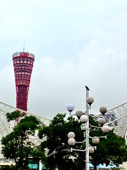kobe meriken park (kaoDorac) Tags: street sky cloud building bird tower japan view kobe scape