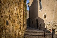 Ladder (s.jc) Tags: pueblo steps pals girona ladder viejo escaleras piedras