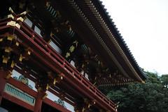 鶴岡八幡宮 - 鎌倉