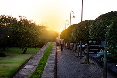 Stroll at the Union Buildings (Siyabonga Mahlangu) Tags: city travel light sunset people urban sun sunlight tree nature garden path walk pretoria unionbuldings