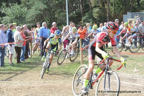 Nieuwelingen & juniores Wiekevorst (123)