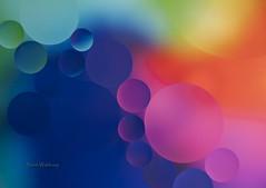 Continuum (Pragmatic1111) Tags: color water circle rainbow nikon spectrum sphere oil oilandwater d700 sb700 mygearandme sb010