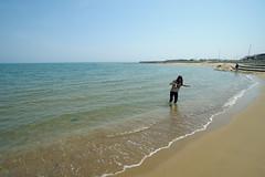DS7_8123.jpg (d3_plus) Tags: street sea sky beach nature japan walking spring scenery bokeh outdoor fine wideangle daily  streetphoto toyama gw      dailyphoto  takaoka thesedays superwideangle hokuriku   fineday      tamron1735    a05   amaharashi tamronspaf1735mmf284dildasphericalif  tamronspaf1735mmf284dildaspherical d700    nikond700 tamronspaf1735mmf284dild tamronspaf1735mmf284  nikonfxshowcase
