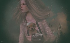 Yeri~First Snow (Skip Staheli (Clientlist closed)) Tags: skipstaheli secondlife sl avatar virtualworld dreamy digitalpainting snow yeriakcouturier winter dog labrador puppy cute fashion