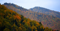 Fall colours in the Humber Valley Newfoundland. (GWP_Photo) Tags: fall colours newfoundland humber valley nikon d750 nikkor 70300