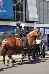 Mounted Police at Portman Road (Ian Press Photography) Tags: ipswich town football club portman road suffolk norwiich city fc 999 police emergency service services match old farm derby championship norfolk horse horses mounted london colp