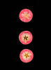pink pearl apple slices (Samantha Forsberg) Tags: apple apples fall fruit healthy organic pinkpearl scanned scanography slices yummy