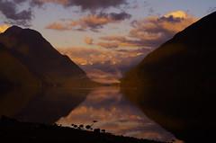 Lake Shore (Kristian Francke) Tags: landscape lake bc canada british columbia november 21 2016 outdoors alouette golden ears provincial park metro vancouver helios 44k4 zenit sunset shore