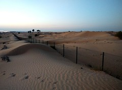 Desert night, UAE /   ,  (Irina.yaNeya) Tags: eau desert night desertnight uae sand noche desierto nochedeldesierto arena